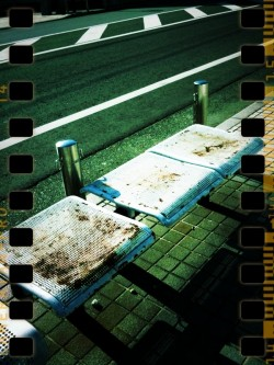 iphone camera tan(Rexersa Film)