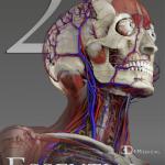 【Essential Anatomy 2】解剖アプリが3Dでとっても見やすい(iPhone&iPad)